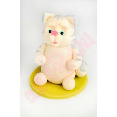 fehér csíkos cica