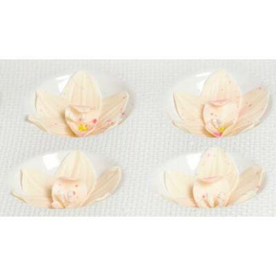 közepes orchidea